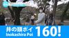 井の頭ポイ Live! 160 12/06(日)